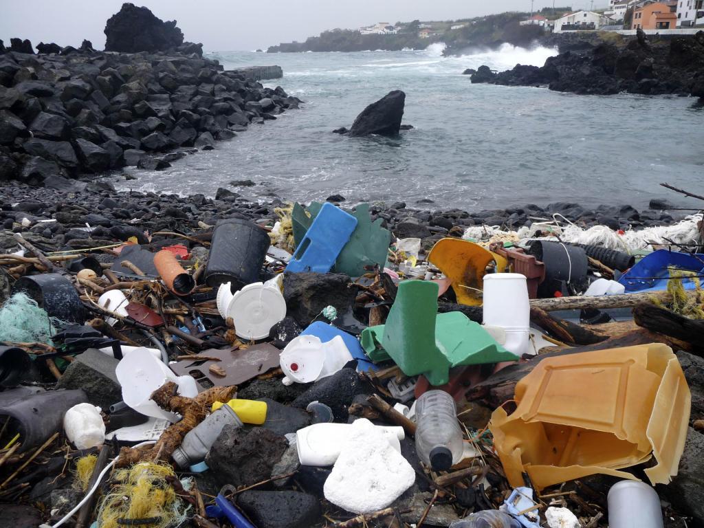 البلاستيك العالمية 2549466-1554177056.j