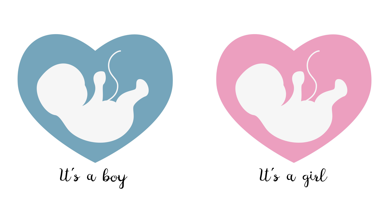 الحمل بتوأم جدول نسبة هرمون الحمل في التوأم
