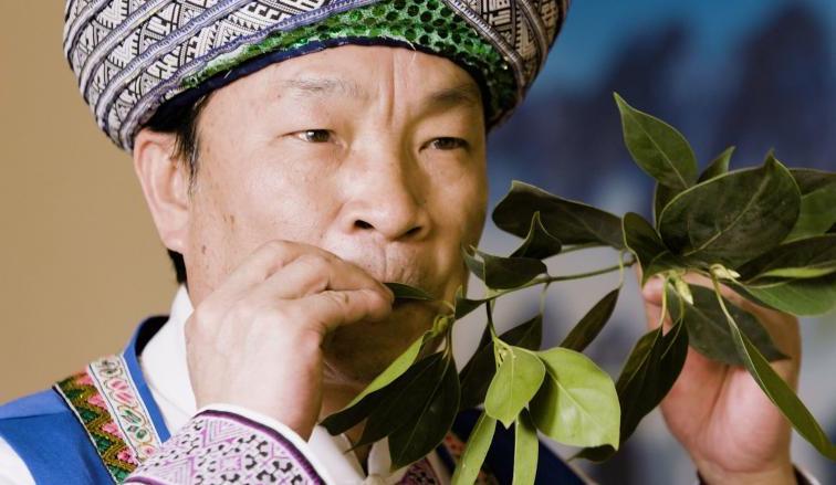 العزف بأوراق الشجر في الصين