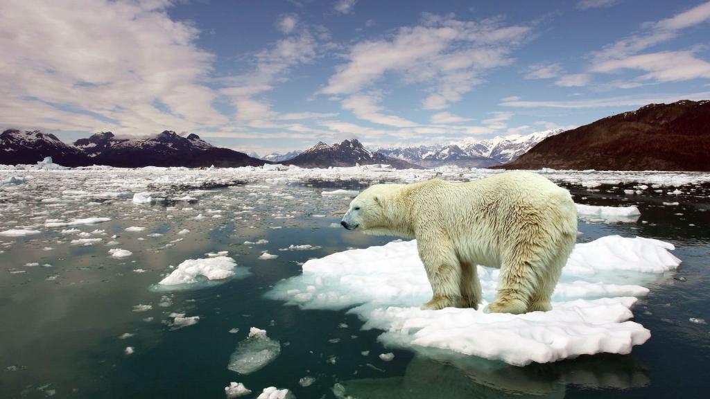 مواجهة تغير المناخ