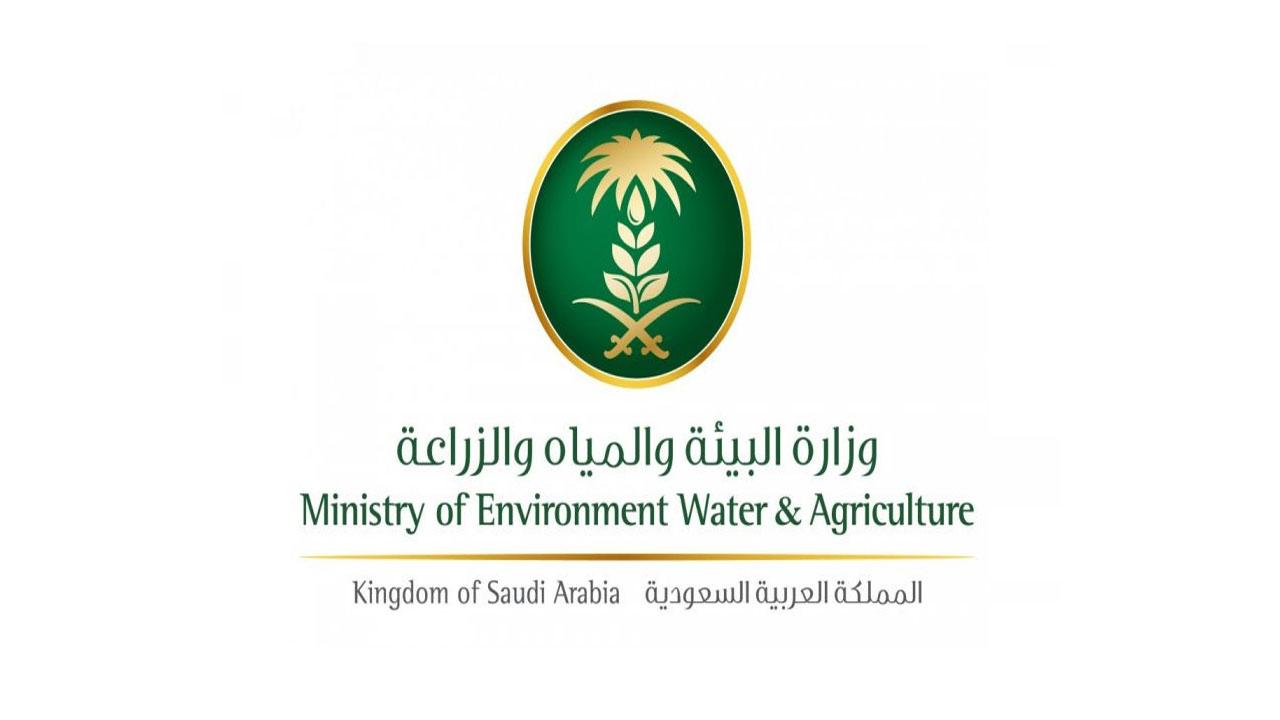 وزارة البيئة السعودية توضح الطريقة المثلى لاختيار الأضحية مجلة سيدتي