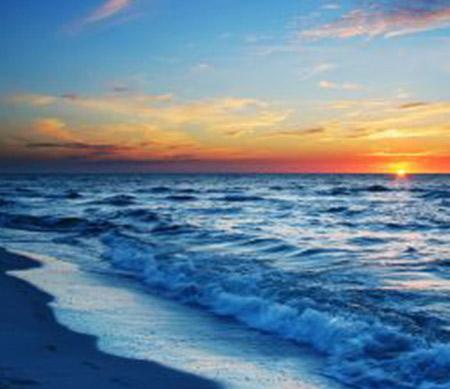 روائح المحيط