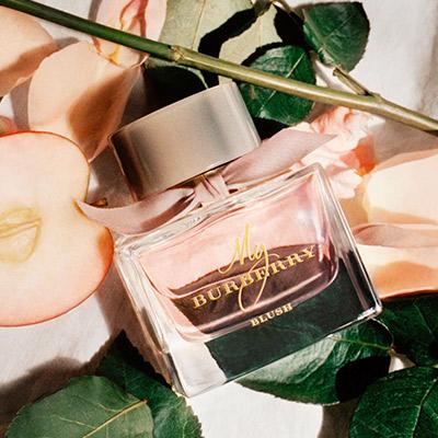 My-Burberry-Blush-Eau-de-Parfum.jpg