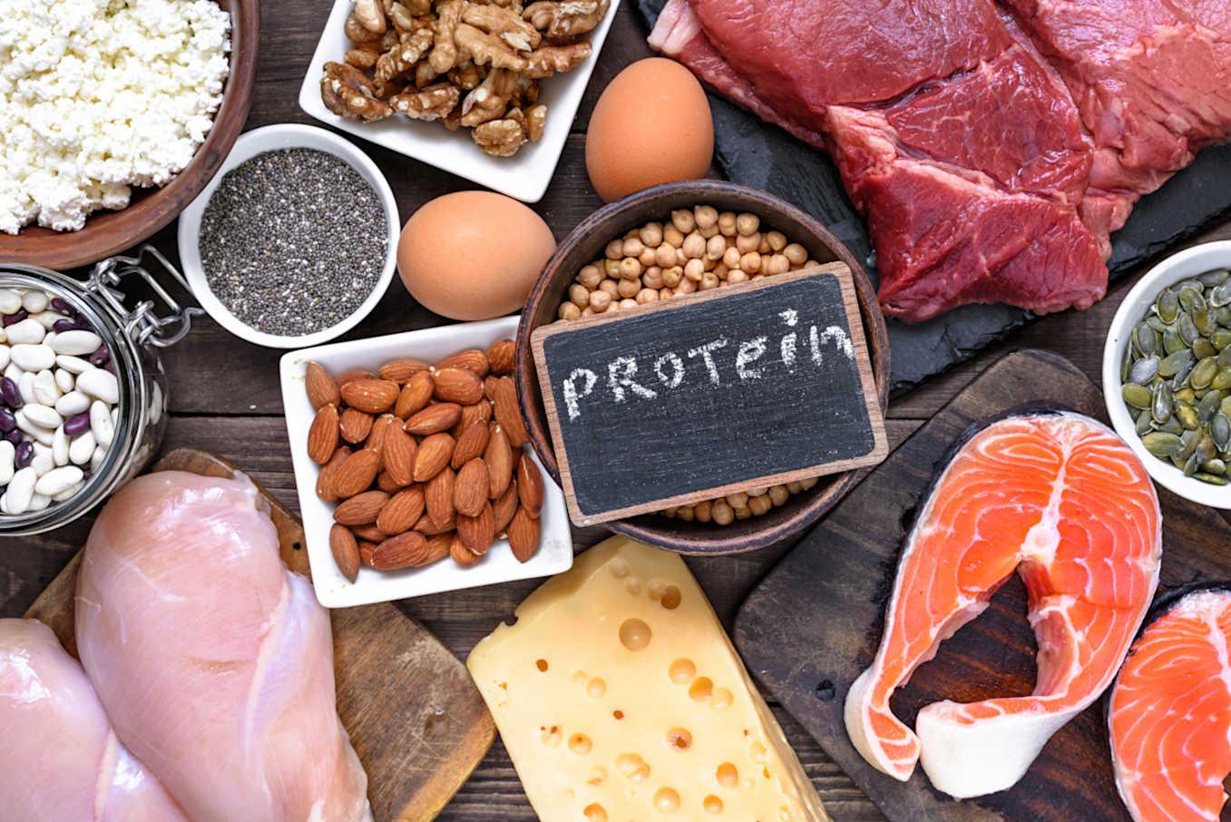 رجيم البروتين كم ينزل؟
