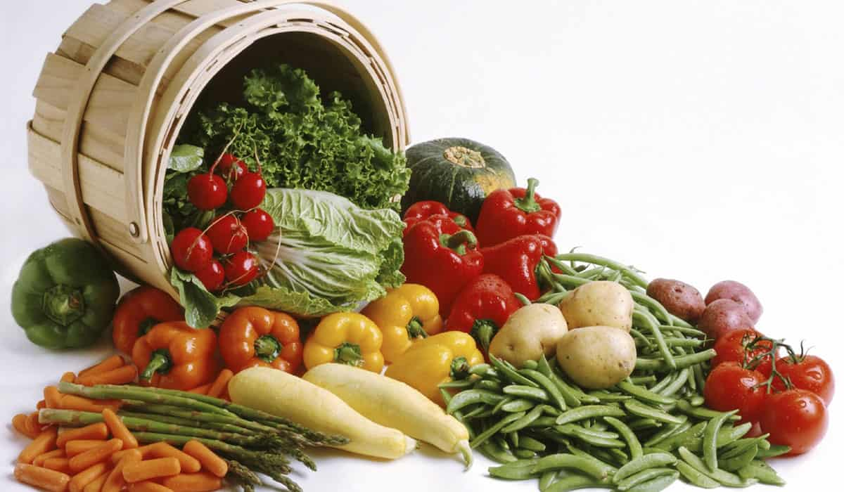 رديم الفاكهة والخضراوات