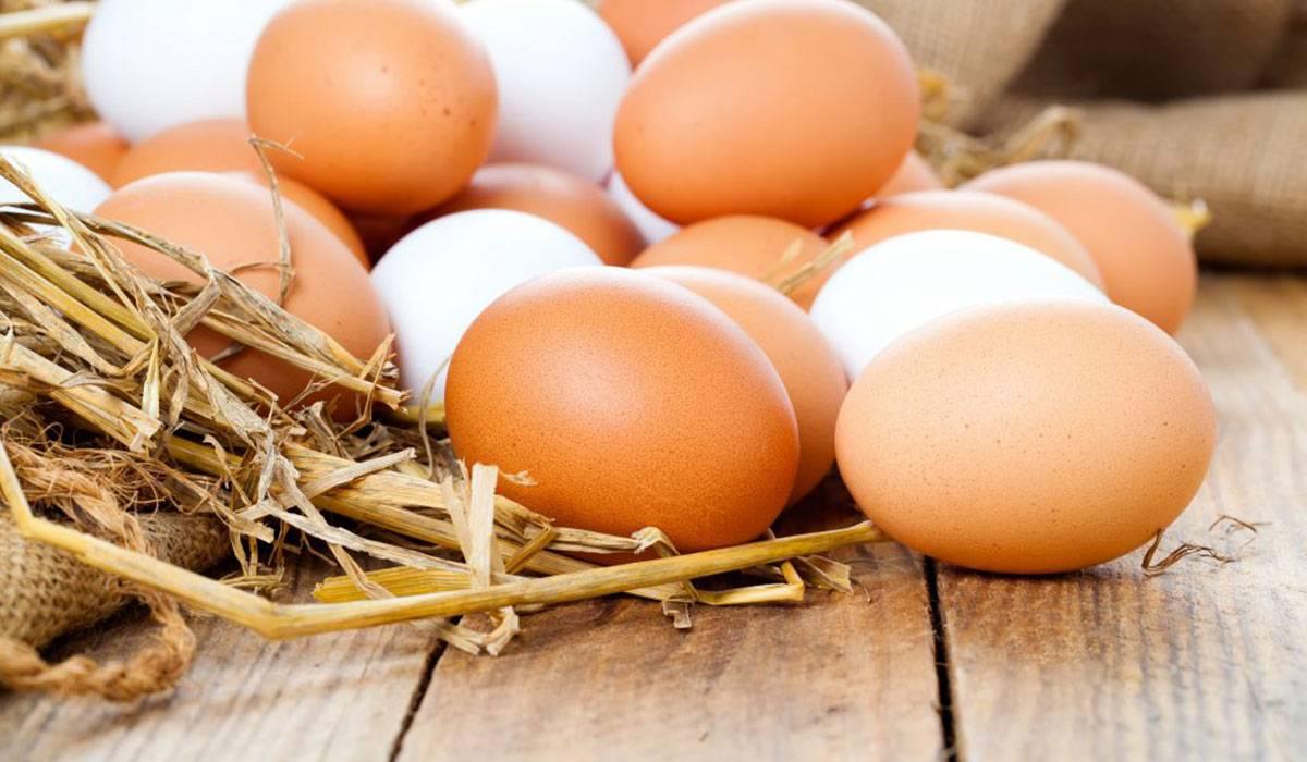 البيض والغليسيرين
