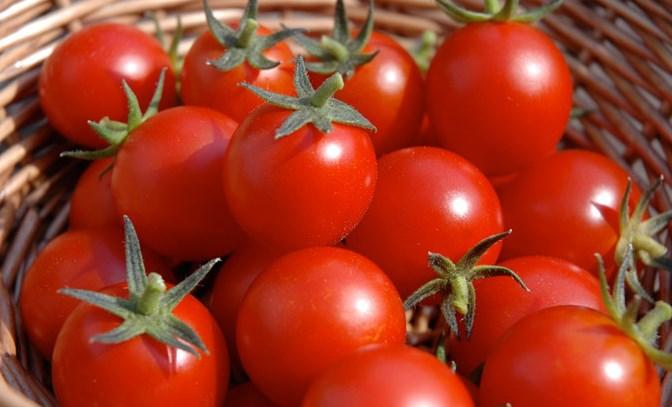 الطماطم للبشرة الدهنية