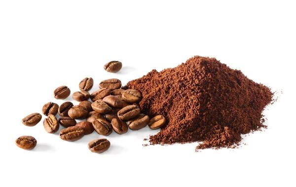 مسحوق القهوة