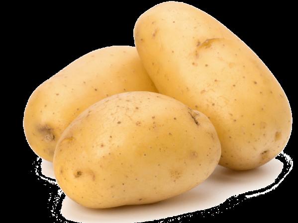 البطاطس للهالات السوداء