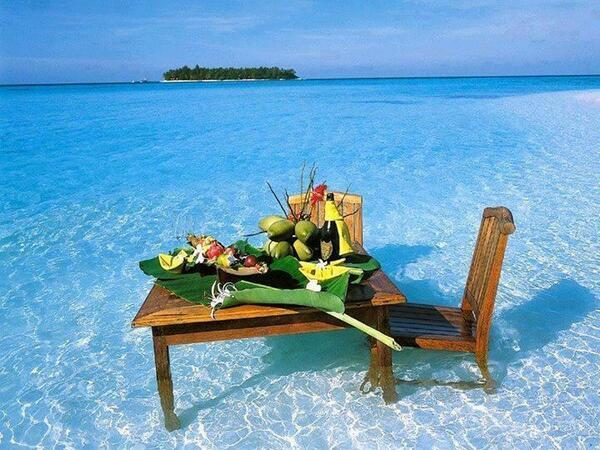عشاء أو غداء على شاطىء البحر