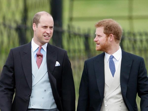 الأميران هاري وويليام