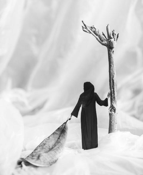 شجرة الحياة - موزة الفلاسي