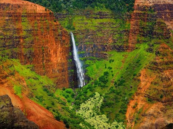 عناوين سياحية في هاواي لإجازة صيفية مع صغارك