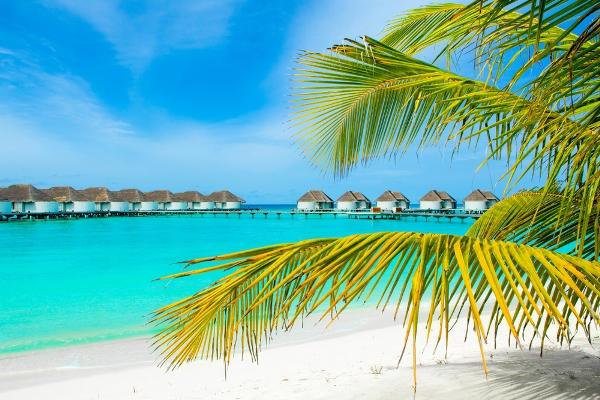 جزر المالديف في رحلة العمر