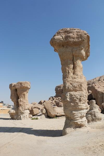 """عناوين سعودية داخلية على """"أجندة"""" السياحة"""