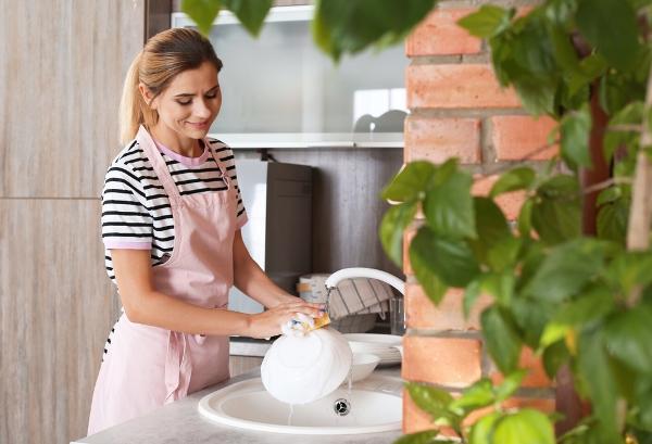التدبير المنزلي: طرق تنظيف المنزل وتعطيره