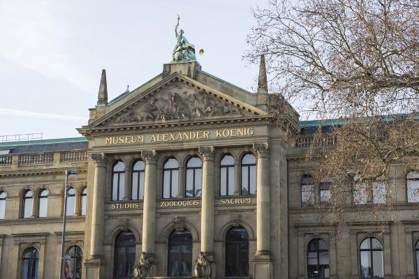 السياحة في ألمانيا: بون وجهة هواة الطبيعة والتاريخ