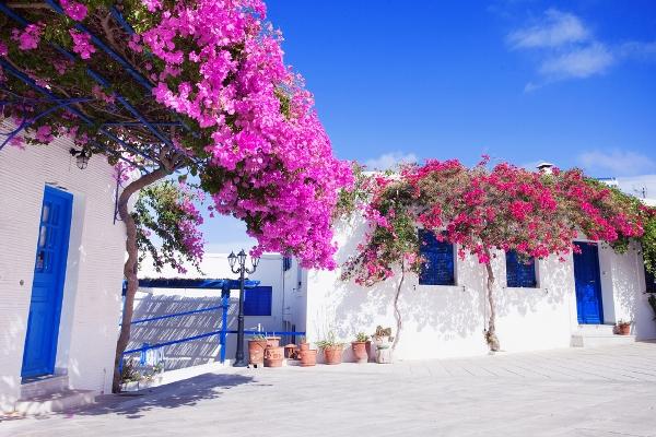 اماكن سياحية في الربيع
