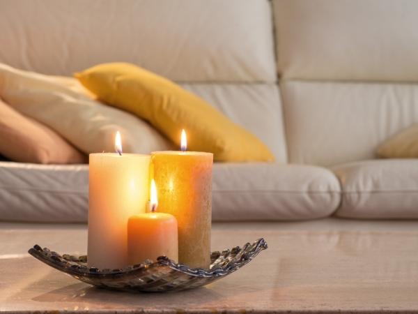 التدبير المنزلي: طرق مكافحة الحشرات