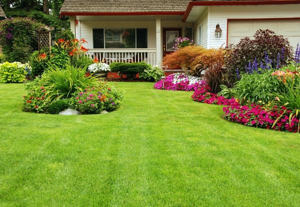 ديكورات حدائق منزلية صيفية Shutterstock_691917748
