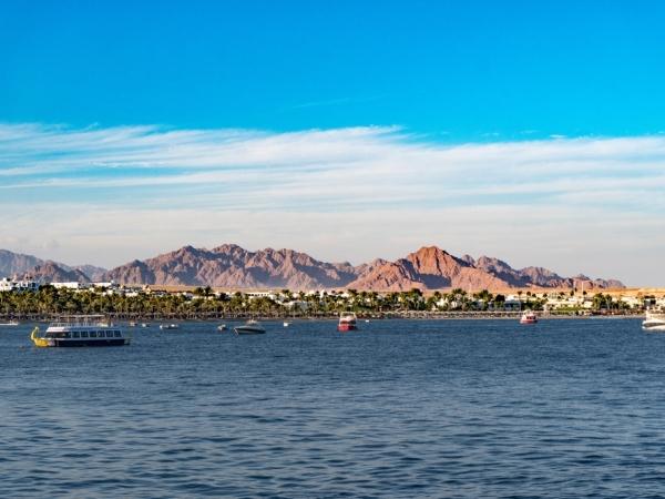السياحة في الشتاء: شرم الشيخ تختصر متعة الغوص
