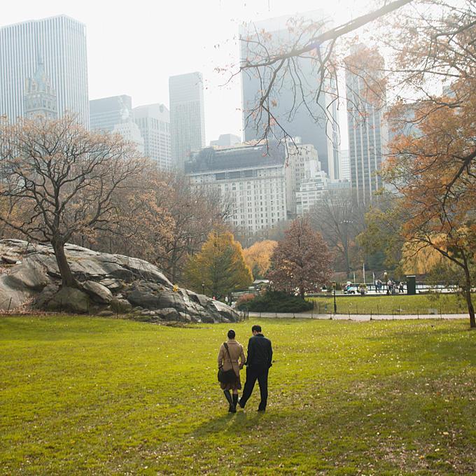 منتزه نيويورك