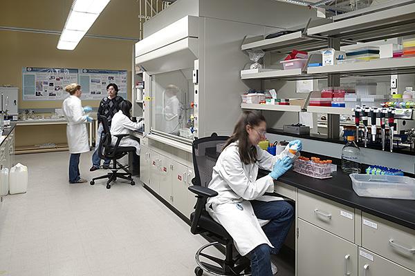 فحص البراز في المختبر كاف للكشف المبكر عن سرطان القولونوالمستقيم
