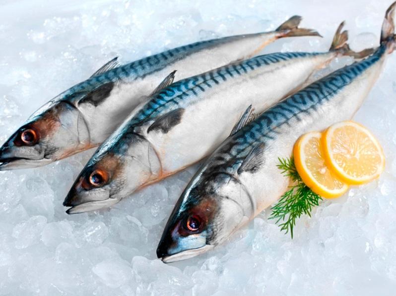 بعض صنوف الأسماك مصدر مهم للفيتامين د