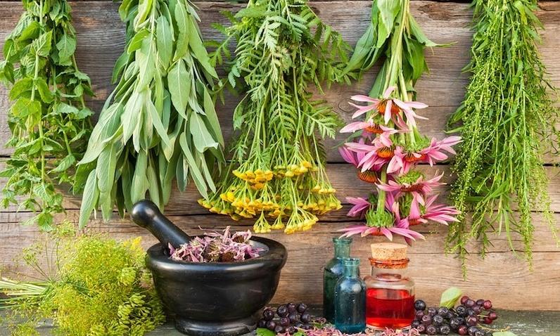 فكري بالنباتات لعلاج الاكتئاب