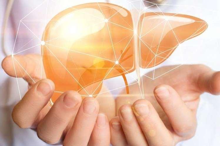 لحماية الكبد فكري بتناول اللبن الرائب وجميع ا لأغذية التي تحتوي على البروبيوتك