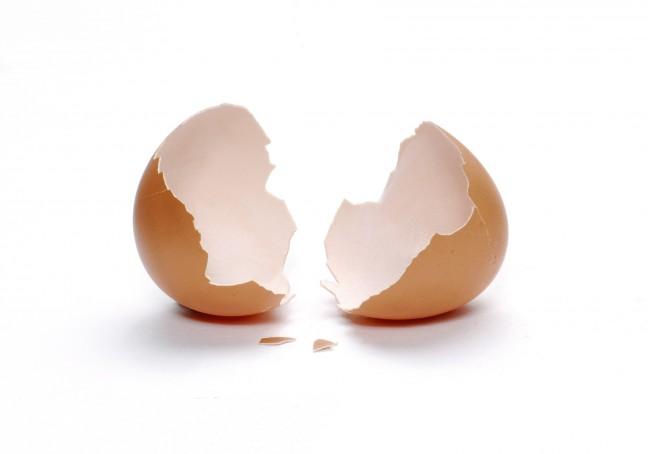 فائدة مذهلة لقشور البيض
