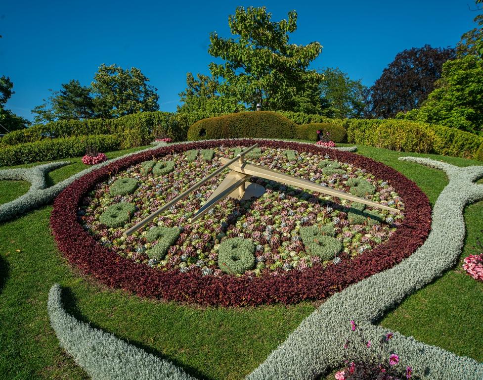 """""""الحديقة الإنجليزية"""" في جنيف"""