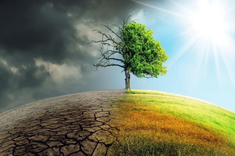 تغيّر مناخي- تعبيرية