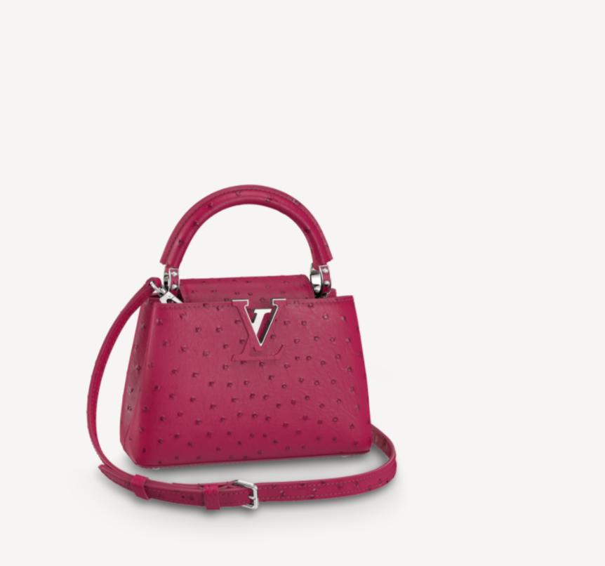 حقيبة من لويس فويتون