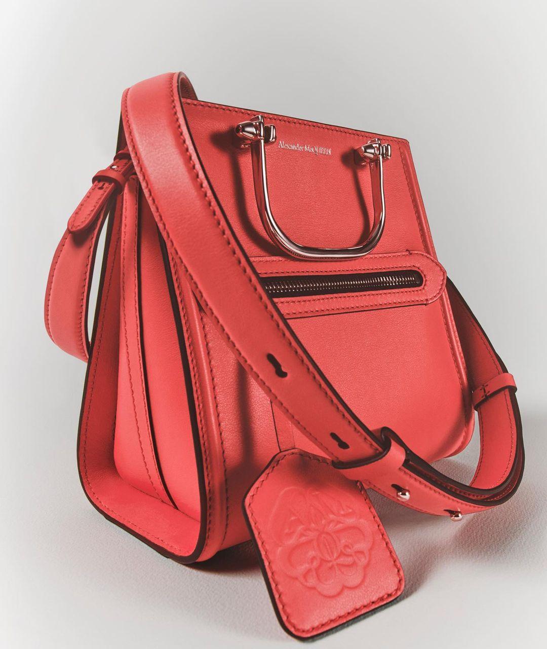 حقيبة من الكسندر مكوين الصورة من انستقرام الدار