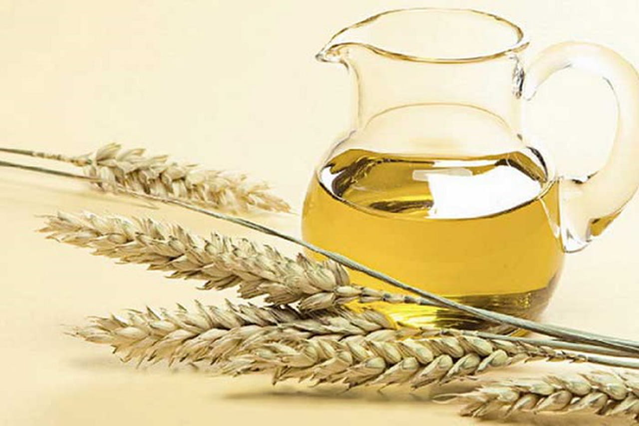 زيت جنين القمح يحارب الخلايا السرطانية
