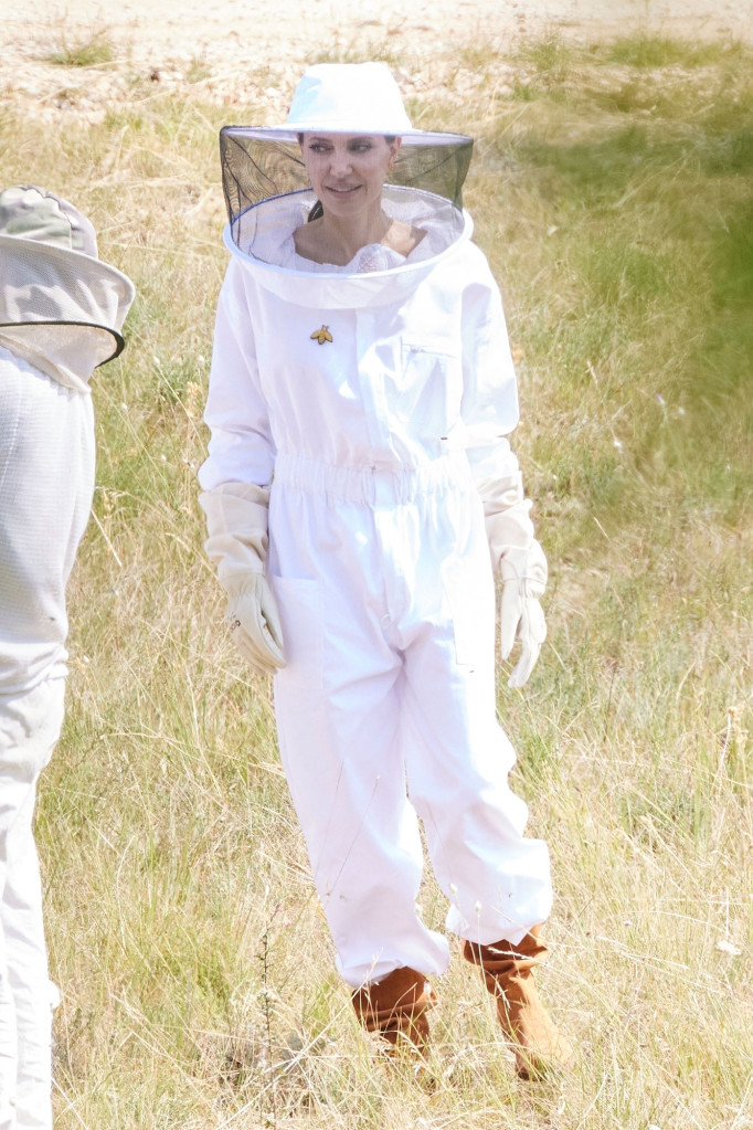 أنجلينا جولي في زي مربي النحل- الصورة من موقع Page 6