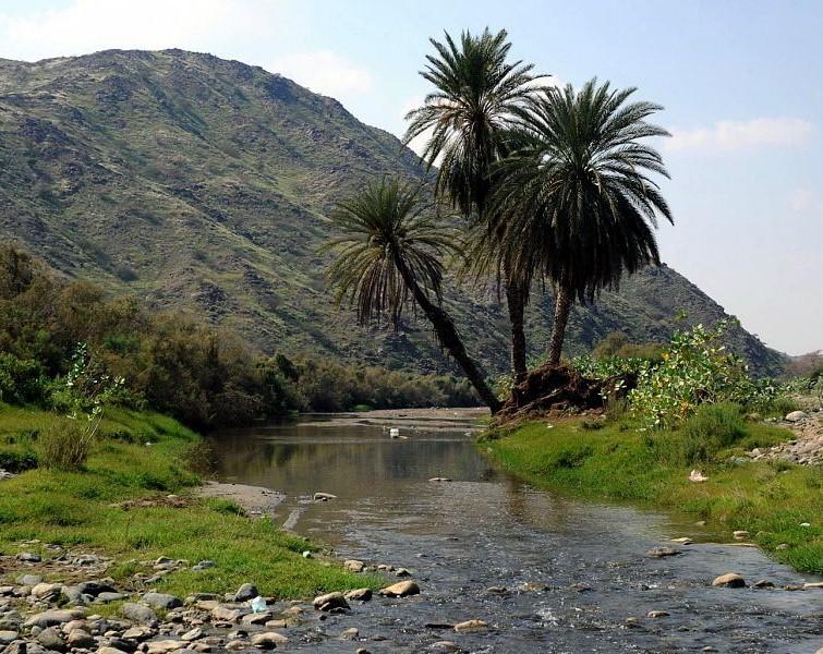 البيئة الطبيعية في السعودية