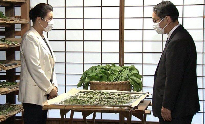 الإمبراطورة اليابانية ماساكو تحضر طقوس تربية دودة القز- الصورة من موقع New my royals