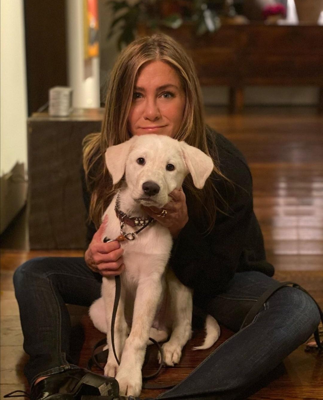 جينيفر أنيستون مع كلبها- الصورة من حسابها على إنستغرام