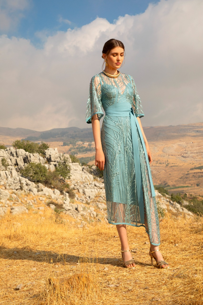 Elie Saab صورة ١ فستان دانتيل طويل من علامة
