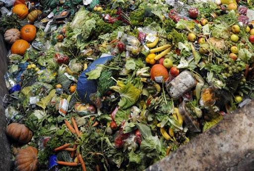 خمسة وتسعون بالمائة من نفايات الطعام إلى مكبات النفايات