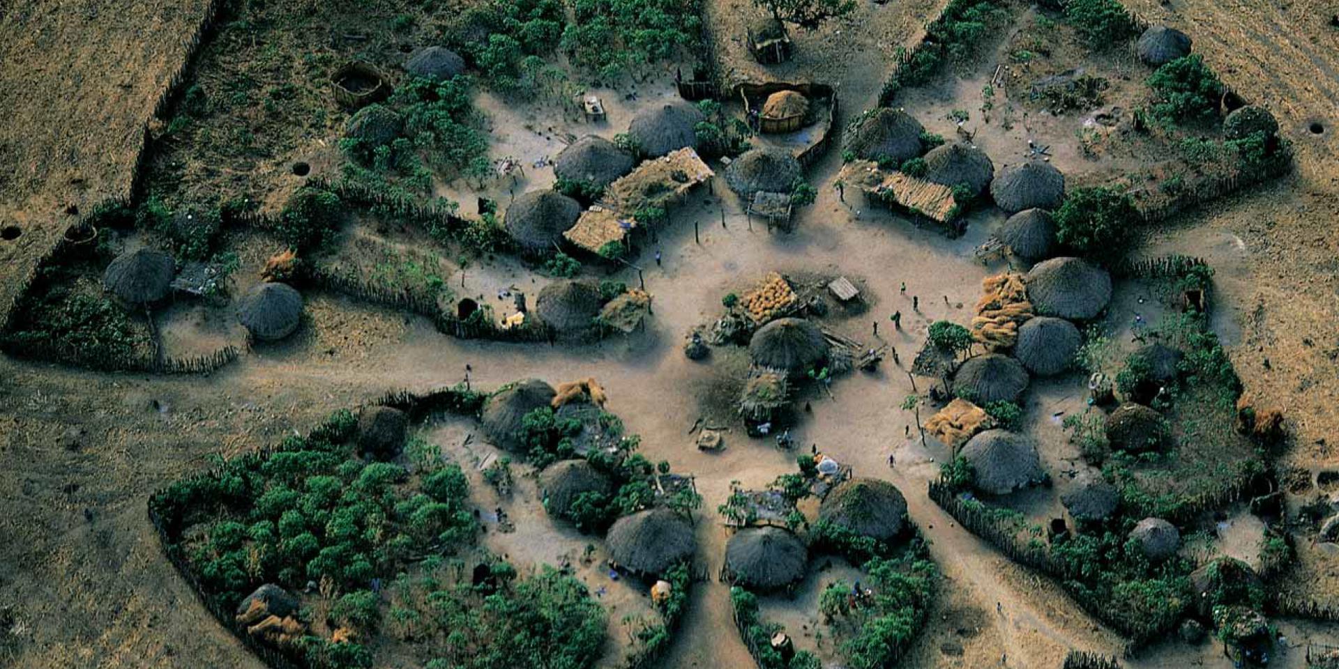 الصورة من موقع الامم المتحدة الاحتفالى بيوم التصحر