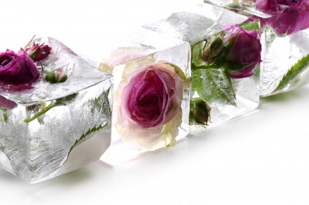 تدليك الوجه بمكعبات ماء الورد