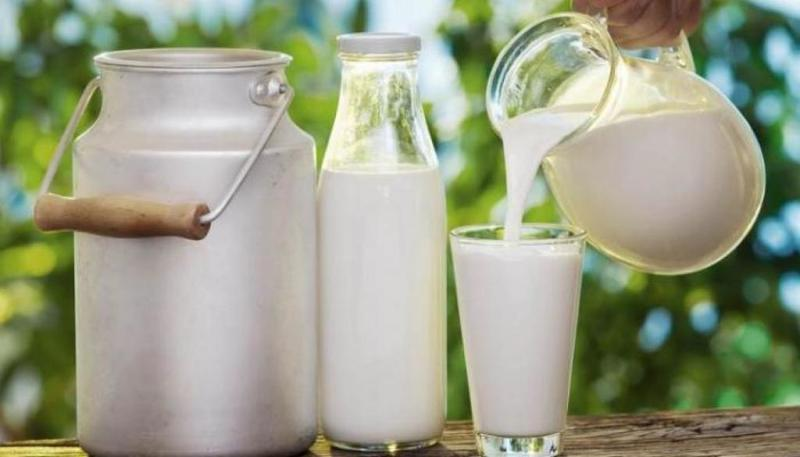 فوائد الحليب مع اليانسون مهمة للغاية